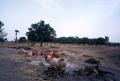 aire de cuisson du village de Oullo (proche de Boromo)